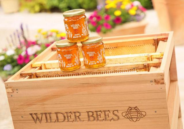 The Wilder Townhouse | Dublin | Bee Wilder in The City