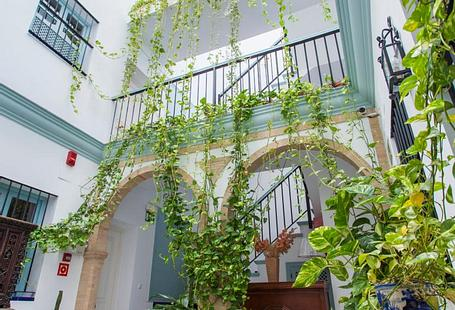 Apartamentos Suites Santa Cruz | Sevilla | NON REFUNDABLE OFFER