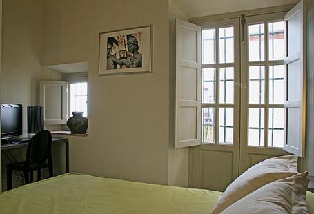 Hotel Boutique Casas de Santa Cruz | Sevilla | DOUBLE ROOM GROUND FLOOR PATIO VIEWS