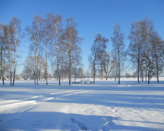 Hotelcamp Reinsehlen | Schneverdingen | Winter's Bliss