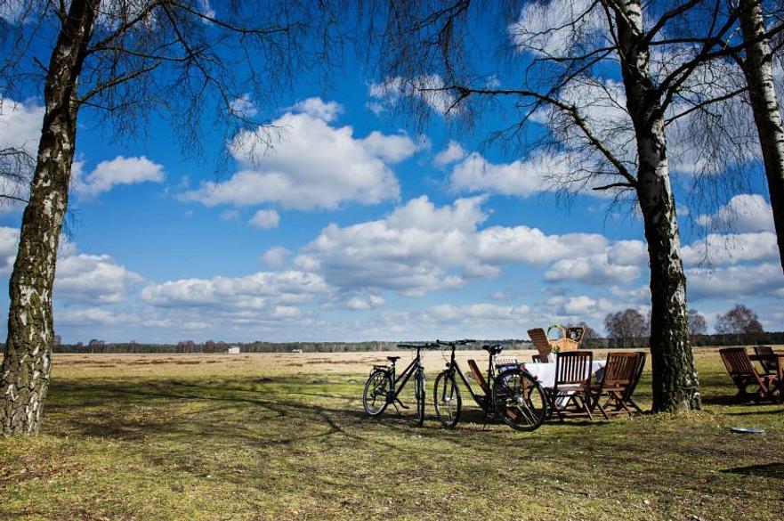 Hotelcamp Reinsehlen | Schneverdingen | Frühlingserwachen