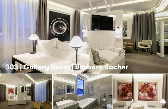 303 – Gallery Room by Barbora Sacher