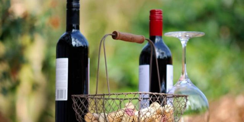 Hotel Valpolicella International | San Pietro in Cariano | Valpolicella Wine Experience